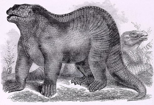 Artist's impression of an Iguanodon.