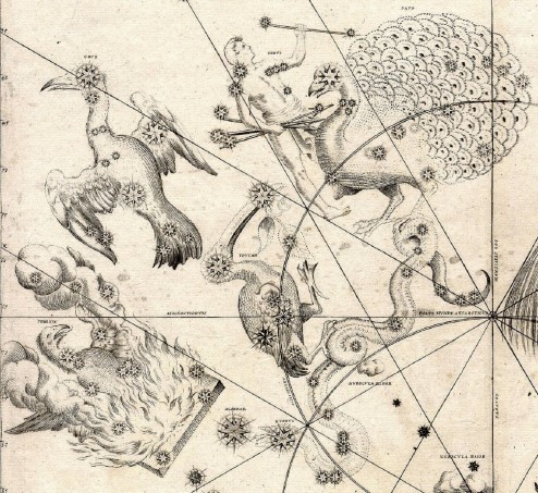 Depiction of constellations that are visible in the southern sky, from 1603.