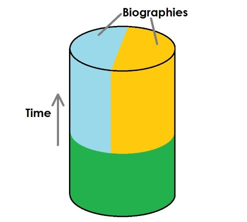 A cylinder, that is green at the bottom, and then spits into yellow and blue. The height of the cylinder represents time, and the colours biographies.