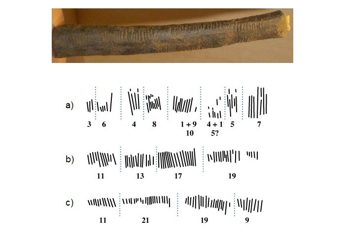 Photograph of the Ishango bone, and a diagram showing the three rows of notches.