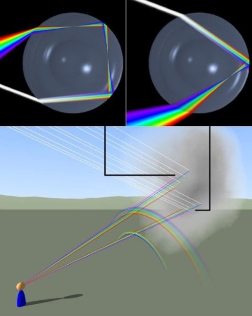 Diagram showing how rainbows are created by reflection and refraction inside of raindrops.