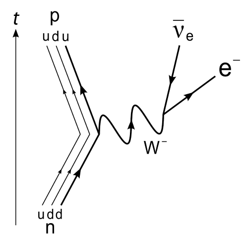 A Feynman diagram showing a neutron decay into a proton. In the process, it emits a –W boson. This decays into an electron and an antineutrino.